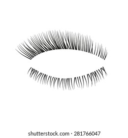 Vector eyelashes