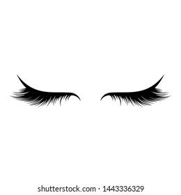 Vector eyelashes on a white background