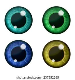 Vector eyes collection. Vector human pupil
