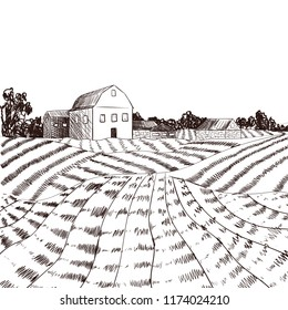 Vector Farm Engraved Style Drawing, Black Lines on White.