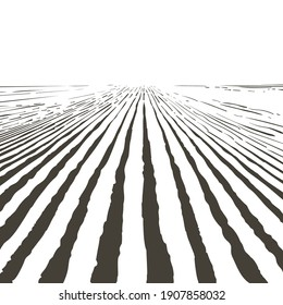 Vector farm field landscape. Pattern of plowed furrows in preparation for crops planting. Rows of soil, rural countryside perspective horizon view. Vintage realistic engraving sketch illustration.
