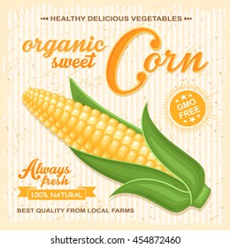 Vector farm poster with fresh cob of corn on retro background