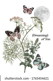vector fashion graphic of botanical herbs and butterflies, moon, quote