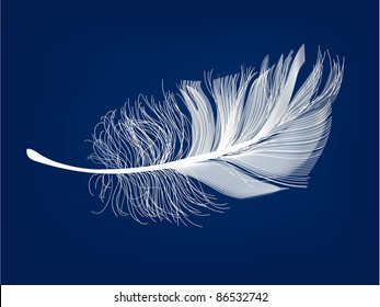 vector feather. eps 10