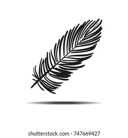 Vector Feather Illustration