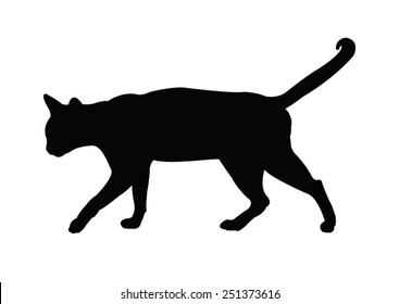vector file of cat silhouette