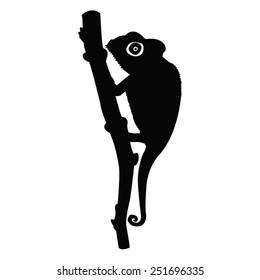 vector file of chameleon silhouette