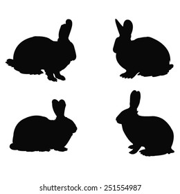 vector file of rabbit