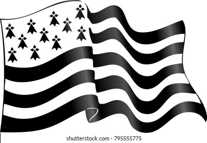 Vector flag of Brittany waving on wind isolated on white background