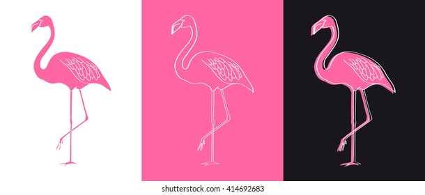 Vector flamingo illustration