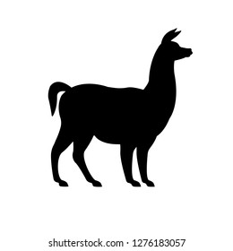 Vector flat black llama silhouette isolated on white background