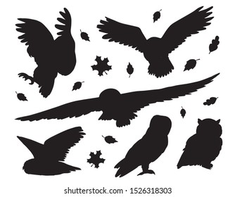 Vector flat black set bundle of owls silhouette isolated on white background