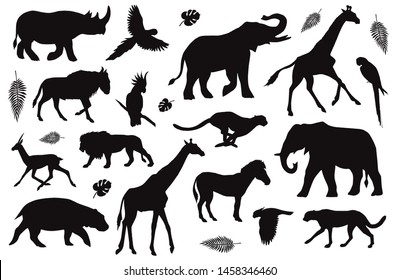 Vector flat black set collection of African animals silhouette isolated on white background