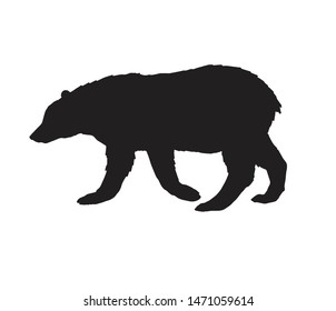 Vector flat black silhouette of grizzly bear isolated on white background