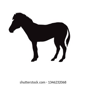 Vector flat black silhouette of zebra icon isolated on white background