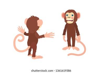 vector flat cartoon animal clip art chimp monkey