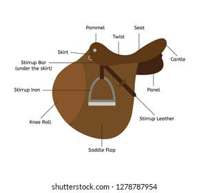 Vector flat cartoon infographic with names of parts of show jumping English saddle