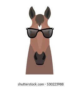 Vector Flat horse hipster head isolated. Bay, brown color  horse face in sunglasses.  Cartoon style illustration. Object for web, poster, banner, print design. Advertisement decoration element