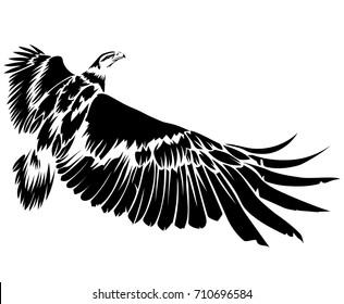 Vector flat illustration of black silhouette flying eagle on white background. Element for design.