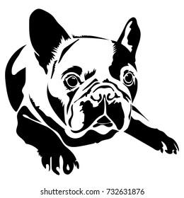 Vector flat illustration of black silhouette french bulldog on white background.