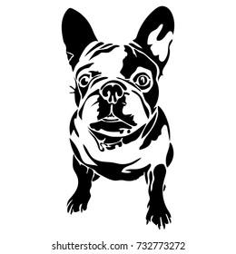 Vector flat illustration of black silhouette bulldog on white background.