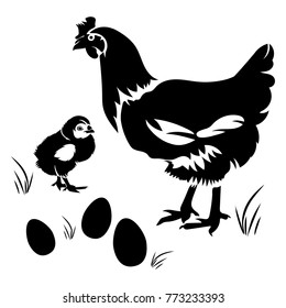 Vector flat illustration of black silhouette chicken and chick with eggs on white background. Isolated. Element for design.