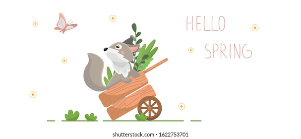 Vector flat illustration with cartoon fox. A gray fox sits in a garden cart and looks at a butterfly. Banner with the inscription: Hello Spring. Isolated on a white background.