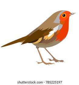 Vector flat illustration of colorful robin. Element for design. Cartoon. Spring design. Little bird.