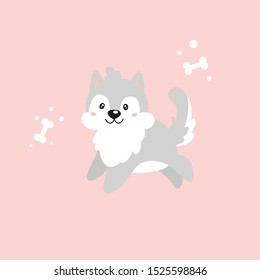Vector flat illustration with a cute dog on a pink background. Gray husky puppy happy and joyful jumps forward. Near it are two sugar bones. Cartoon kawaii illustration for baby.