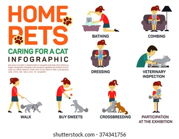 Vector flat illustration infographic of caring about pets cat. Bathing, washing, dressing, combing, veterinary inspection, going for a walk, crossbreeding, buying food,  participation in an exhibition