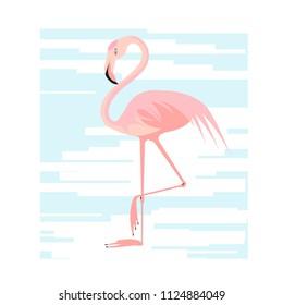 Vector flat illustration with  pink flamigo.