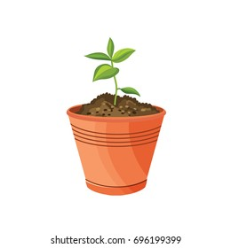 Vector flat indoor plant pot illustration. Colorful indoor plants in pot for your design.