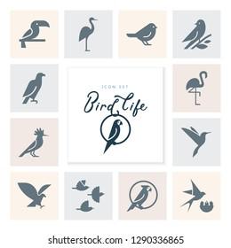 Vector flat simple minimalistic bird logo. Birds icon, animal sign, symbol isolated on white background. Nature park, national zoo, pet shop logo, animal food store logo.