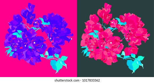 Vector flat style, neon violet and pink bougainvillea / paper flower with leaves on pink and tint/pastel blue background