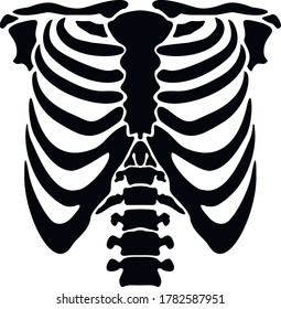 vector flat, thorax of skeleton,stencil