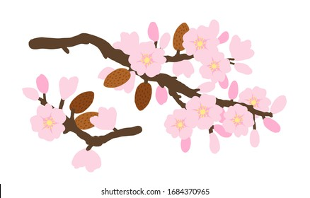 Vector. Floral arrangement template with almond brunch for textile, postcards, banners, flyers and others.