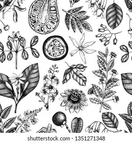 Vector floral background. Exotic fruits and plants seamless pattern. Hand drawn aromatic and medicinal plant. Botanical design. Vector outlines. Perfect for greeting cards, invitation, branding.