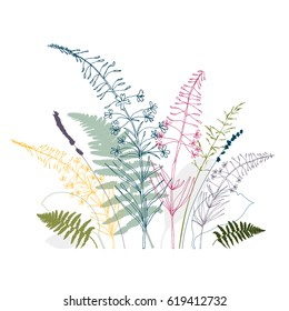 Vector floral background  with  fireweed flowers, fern leaves, lavender and grass. Hand drawn thin lines meadow wild plants in pink, gray, blue and green, isolated on white background.