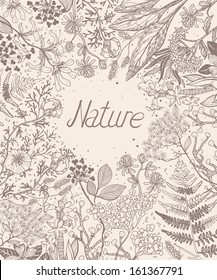 vector floral background with hand drawn plants, flowers and herbs