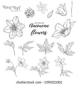 vector floral black and white anemone flowers set