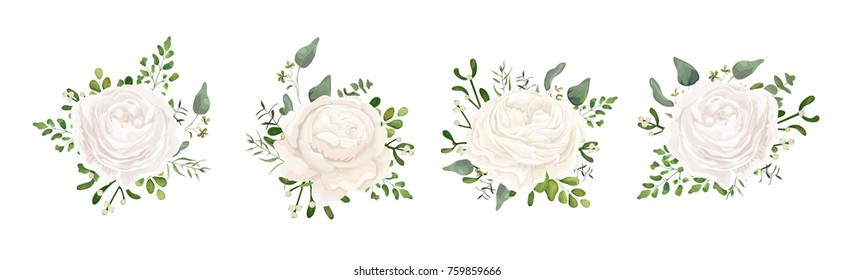 Vector floral bouquet design: white garden Ranunculus, Rose flower, fern, eucalyptus, mistletoe branch greenery leaves berry. Wedding vector invite card Watercolor watercolor cute designer element set