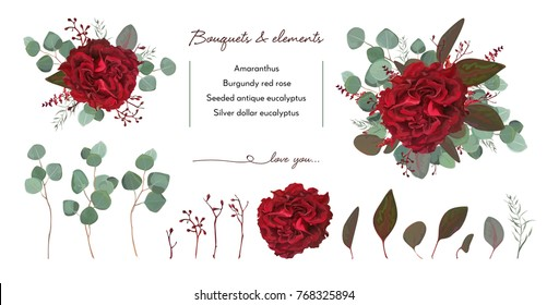 Vector floral bouquet design with: garden red burgundy Rose flower, seeded Eucalyptus branch & silver green fern leaves, Watercolor designer editable elements set. Marsala wedding invite card postcard