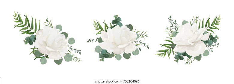 Vector floral bouquet set of garden white powder peony, Rose flower, Eucalyptus branch greenery palm leaves and green herbs mix. Watercolor elegant designer elements for design. Isolated and editable