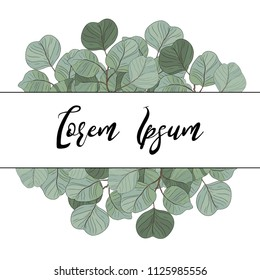 Vector floral card design Eucalyptus silver dollar branch greenery foliage natural leaves frame. Vector decorative rustic wedding invite. Postcard elegant template