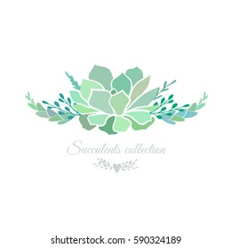 Vector floral composition with succulents isolated on white.