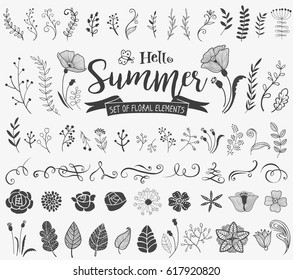 Vector floral design elements in doodle style, hand-drawn flowers and insects and plants for summer mood