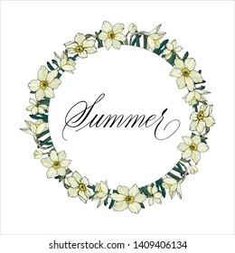 Vector floral illustration. Narcissus flowers.  Template for romantic and wedding design, posters, greeting cards, announcements, advertisement. Summer hand written in copperplate script.
