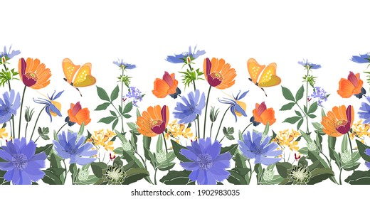 Vector floral seamless border. Summer flowers, green leaves. Chicory, mallow, gaillardia, marigold, oxeye daisy. Orange, blue flowers, butterfies isolated on white background.