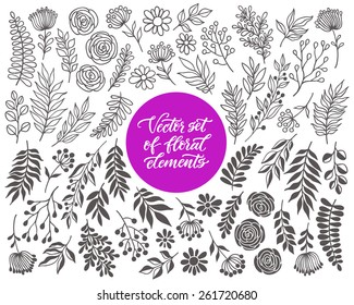 Vector floral set. Graphic collection with leaves and flowers, drawing elements. Spring or summer design for invitation, wedding or greeting cards