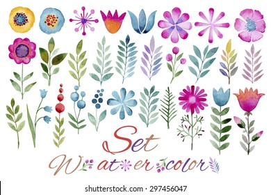Vector floral set.Collection with leaves.Spring or summer design for invitation, wedding or greeting cards.